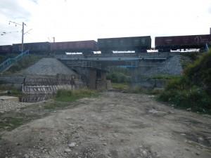 DSCN3195